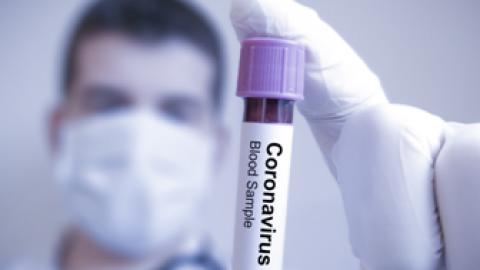 Coronavirus (CoV)- Una nueva cepa