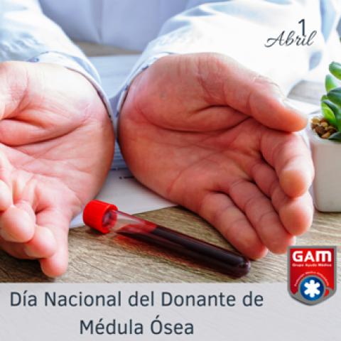 1 de Abril – Día Nacional del Donante de Médula Ósea