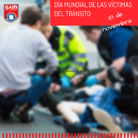 Día mundial de las víctimas del tránsito