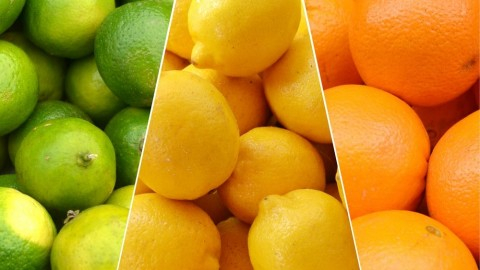Alimentos para hacerle frente al otoño e invierno